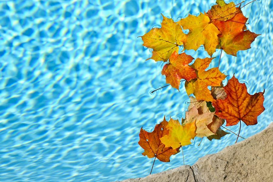 Fall Pool Maintenance Tips: Part 2